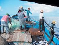 VFTU slams China's fishing ban
