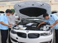 Guidelines for collection of tax arrears for cars of overseas Vietnamese citizens