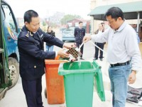 Smuggled fireworks from border areas