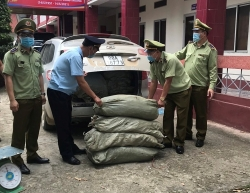 Cao Bang seizes more than two tons of tobacco materials