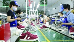 Making good use of opportunities from EVFTA, leather and footwear exports accelerate to the EU