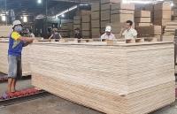 Vietnam's timber industry facing many risks of trade defense