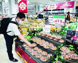 Export of agricultural products is bountiful amid the siege of Covid-19