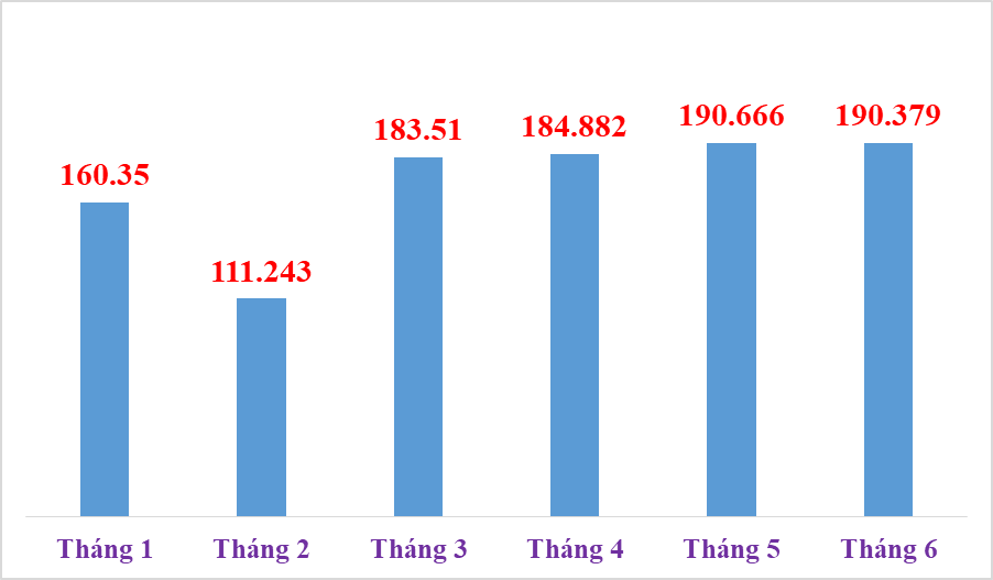 Over 1 million declarations of imported and exported goods processed by Hai Phong Customs