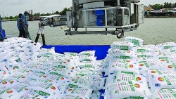 Why hasn't the export stopped when the domestic fertiliser price has increased?