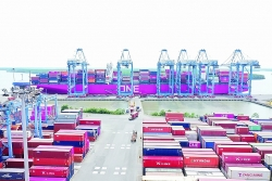 Support enterprises to transport goods in Cai Mep-Thi Vai port complex