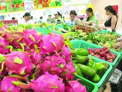 Many opportunities for Vietnamese agricultural products to enter the Russian market