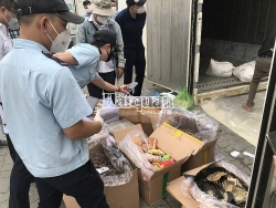 Customs seizes seahorses and bird's nest hidden inside container of blood cockles