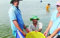 """Fishery sector determines to remove the """"yellow card"""", targeting US$10 billion"""