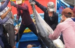 """""""Clear out"""" the violating fishing vessel in October 2022 to soon get the IUU """"yellow card"""" removed"""