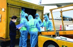 HCM City Customs: Flexible clearance for anti-pandemic products