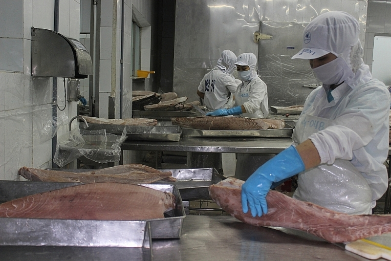 Seafood exports could lose half a billion USD per year if given a
