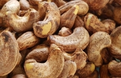 Preventing risk of tax evasion from imported raw cashew