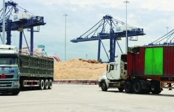 Vung Ang Customs accompanies woodchip exporters to resume operations