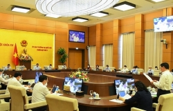 100% of Standing Committee of the National Assembly votes for issuing Resolution on tax exemption and reduction