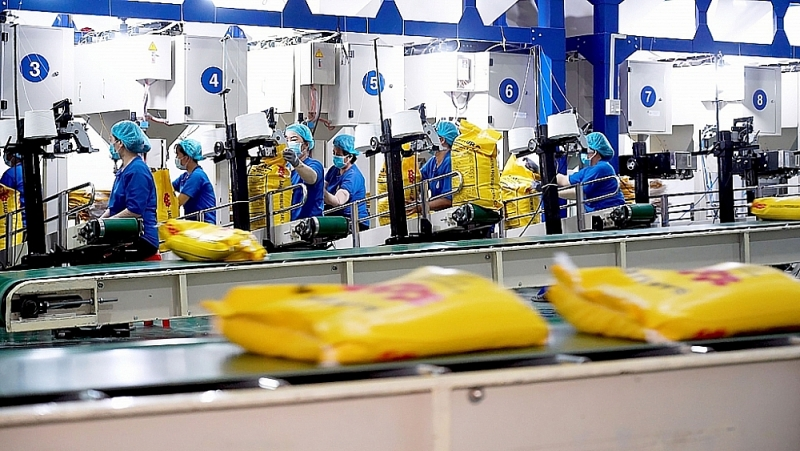 Rice packing line for export at Trung An High-Tech Agriculture Joint Stock Company. Photo: provided by the company