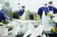 """Fishery enterprises are in trouble because of IUU """"yellow card"""""""