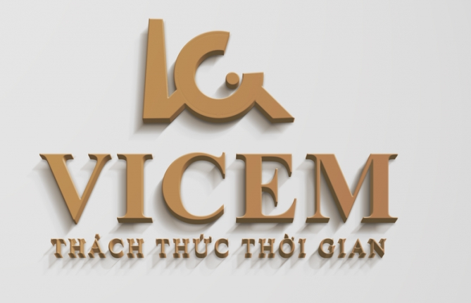Vincem's management and use of capital invested in other enterprises should be supervised