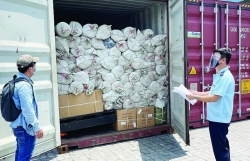 Customs in the southeast region supporting businesses to restore import and export activities
