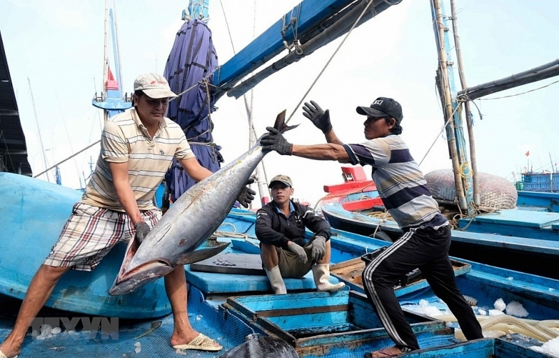 Stopping violating fishing vessels this year to remove the