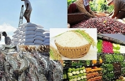 The key to success in agricultural exports to EU