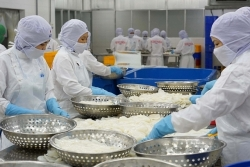 Many products exported to the EU increased