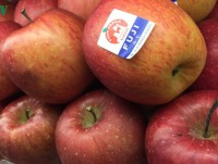 Japan's giant apples attract customers for Tet