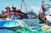 """Facing difficulties to remove seafood """"yellow card"""""""