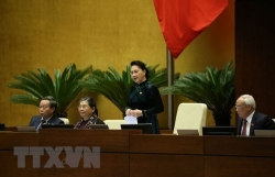 Nguyen Thi Kim Ngan relieved from chairmanship of NA, National Election Council