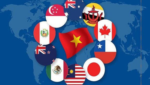 vietnams exports to cptpp countries surge