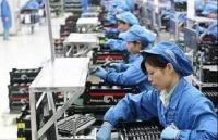Vietnam workers adapt to international integration