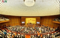 Law makers set to adopt resolutions on important issues