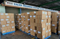 Vietnam- Australia trade revenue surges nearly 34 percent