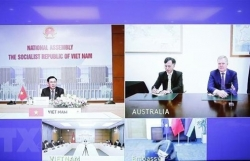 Top legislator holds phone talks with Speaker of Australian lower house