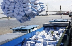 Vietnamese firms win bids for rice exports