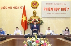 Top legislator chairs National Election Council's seventh meeting