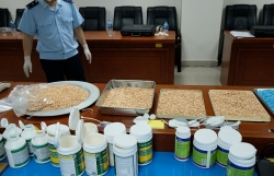 Hanoi Customs presided over the successful dismantling of 3 major drug cases