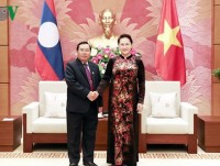 Top Vietnamese legislator wishes for stronger parliamentary ties with Laos