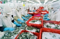 """Fishery sector aims for """"yellow card"""" removal with US$10 billion export target in sight"""