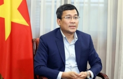 """Vaccine diplomacy to play pivotal role in Việt Nam""""s search for vaccines"""