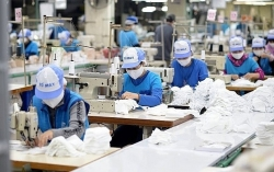 More tax, fee cuts to benefit pandemic-hit enterprises, people