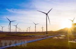 Green finance promotes Việt Nam's sustainable growth