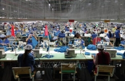 Vietnam advised to attract more FDI to boost economic growth