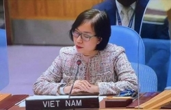 Universalization of  vaccine needed for COVID-19 combat in new normal: Vietnamese diplomat