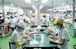 Experts seek ways for Viet Nam to have healthier supply chain