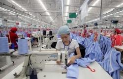 Registered capital of newly-established enterprises up in 11 months