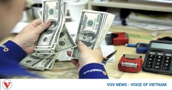 Overseas remittances to HCM City remain stable despite COVID-19