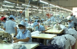Ministry proposes special policies for large SOEs