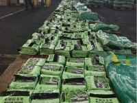 From the case of seizure 276 kg of meth from Philippines: Customs coordinated to close a number of cases of narcotics cross nations