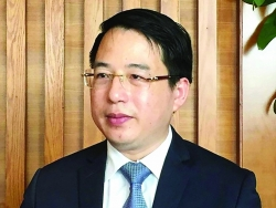 Director of Department of Corporate Finance Dang Quyet Tien: It is impossible to subsidise forever